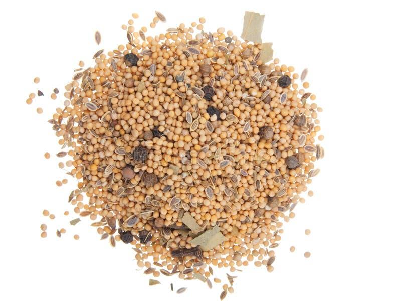 Especiarias misturadas fotografia de stock