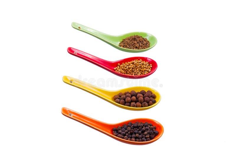 Especiarias nas colheres coloridas imagem de stock