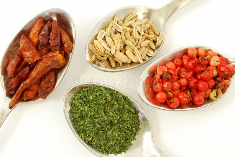 Especiarias, sabores, e aromas imagens de stock