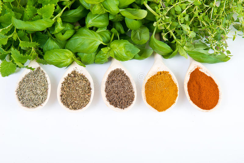 Especiarias secadas e frescas fotos de stock
