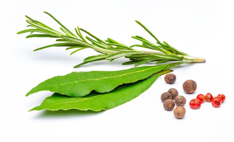Especiarias tradicionais, ramo dos alecrins, folhas de louro, pimenta fotografia de stock