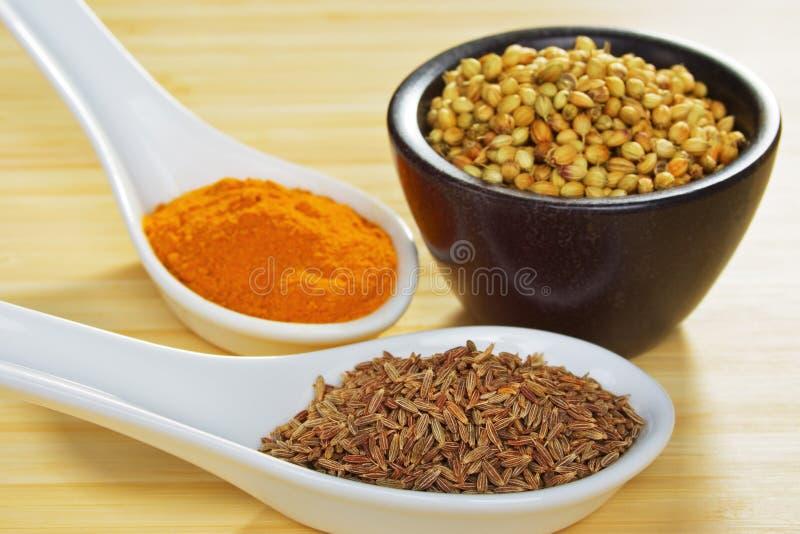Especias básicas del curry foto de archivo