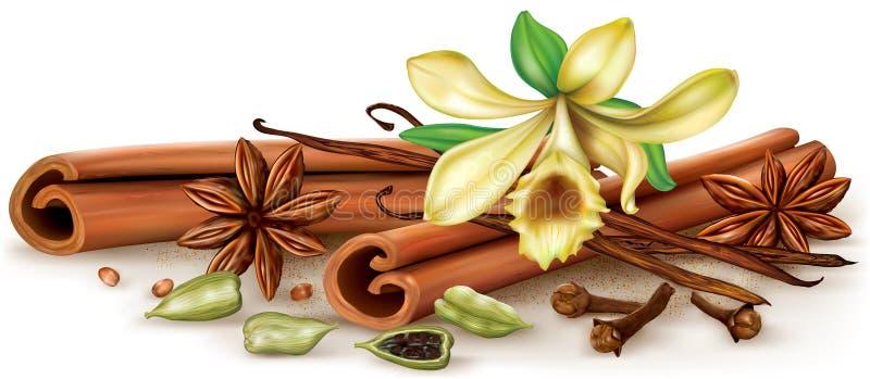 Especias del sabor stock de ilustración