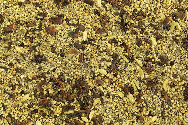 Especias e hierbas aromáticas, textura inconsútil con las especias e hierbas fotos de archivo libres de regalías