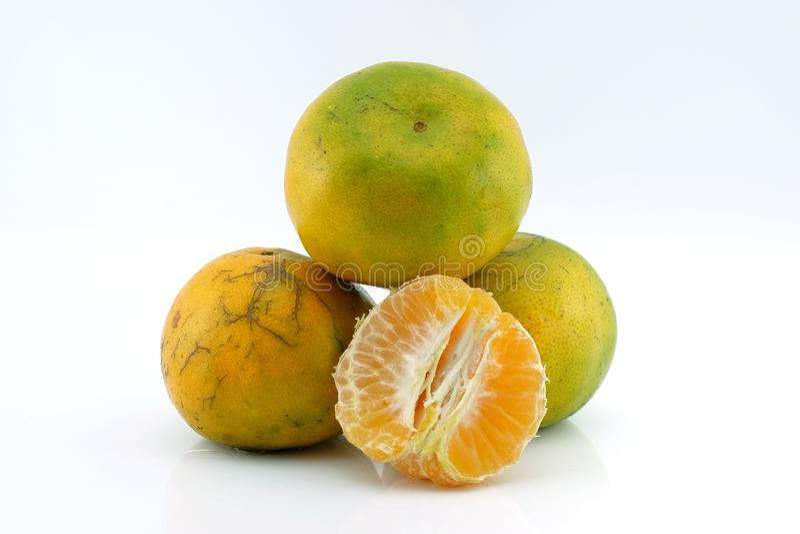 Especie de la mandarina en Tailandia en un fondo blanco foto de archivo libre de regalías