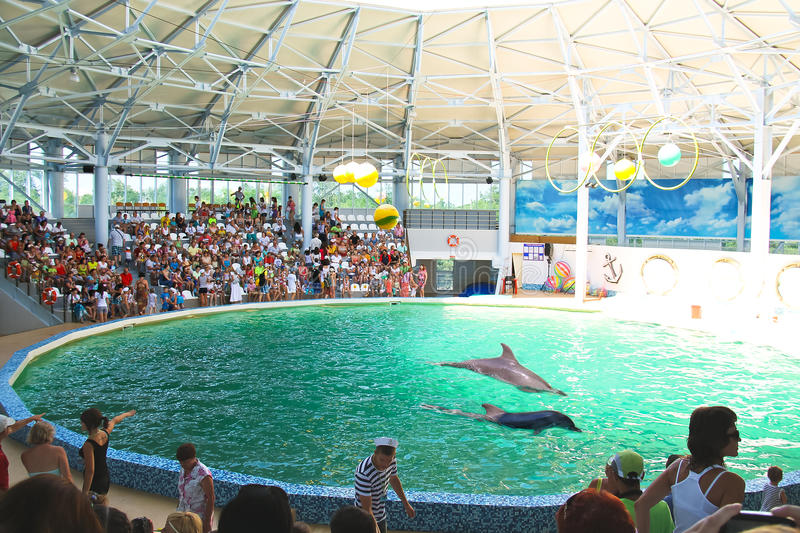 Espectadores en la representación en el dolphinarium imágenes de archivo libres de regalías