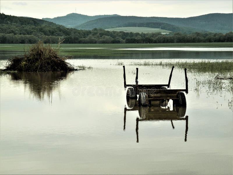 Espelhando - carro agrícola em uma área de inundação, próximo a Rudolstadt, Thuringia, Alemanha fotografia de stock