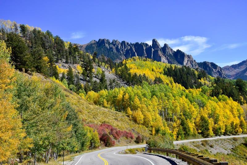 Espen in Daling van Colorado royalty-vrije stock fotografie