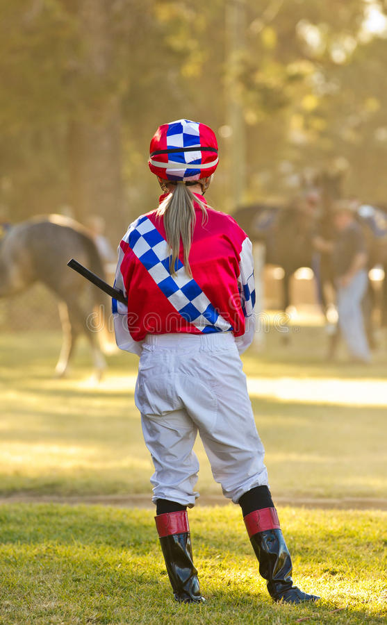 Esperando um cavalo de raça imagem de stock royalty free