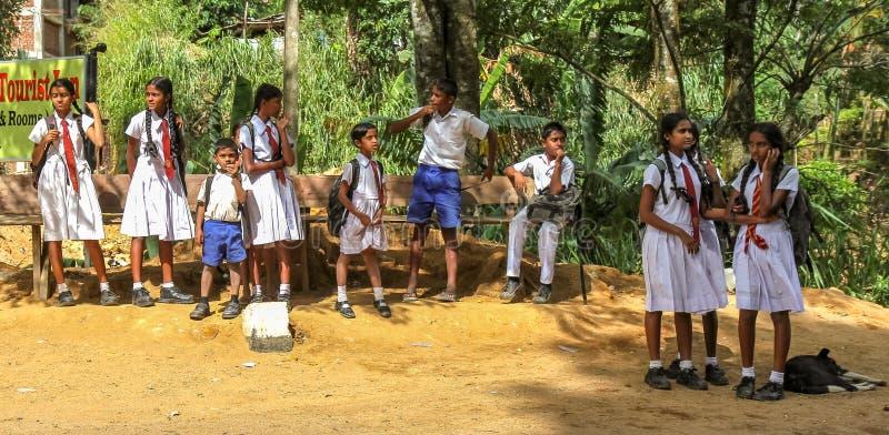 Esperar el autobús escolar en Sri Lanka imagen de archivo