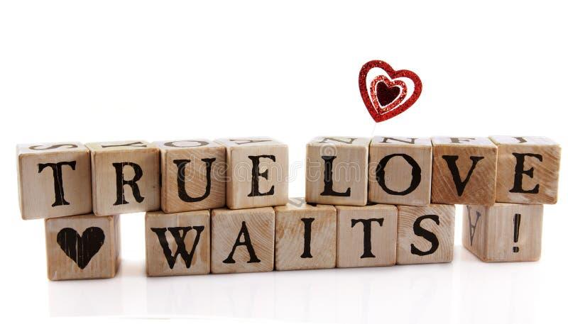 Esperas verdadeiras do amor imagens de stock royalty free