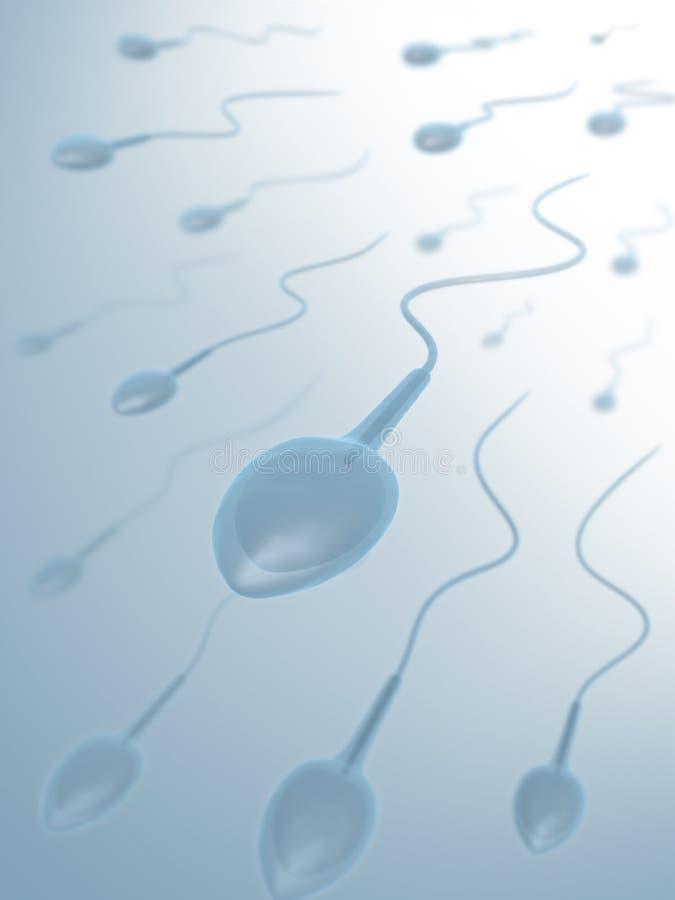 Esperma (semen) stock de ilustración