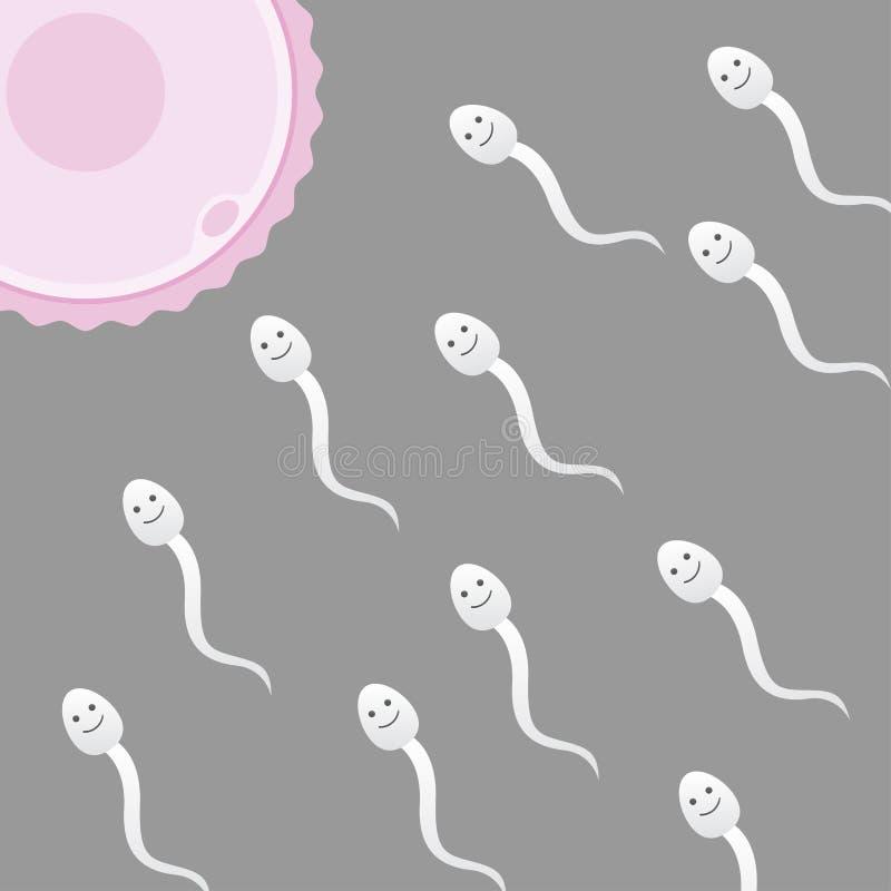 Esperma y huevo stock de ilustración