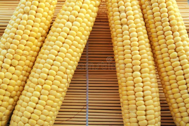 A espiga de milho entre as folhas verdes para você projeta foto de stock
