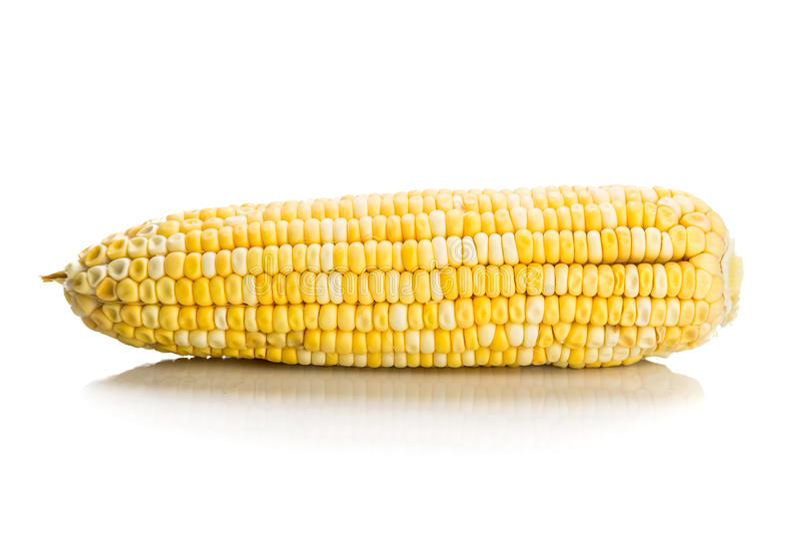 Espiga de milho fresca do milho com as sementes do núcleo sem casca imagem de stock royalty free