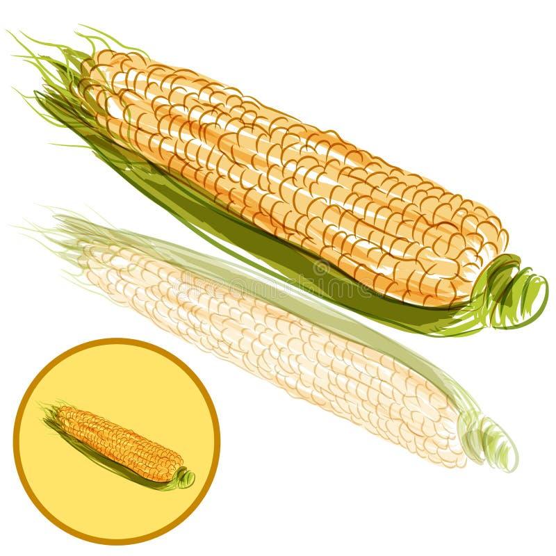 Espiga de trigo stock de ilustración