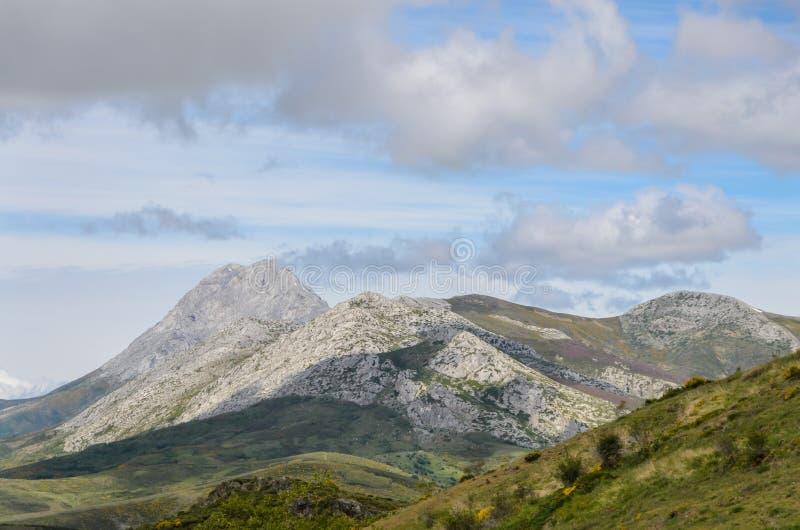 Espiguilla de Palencia en la montaña de Palencia fotografía de archivo libre de regalías