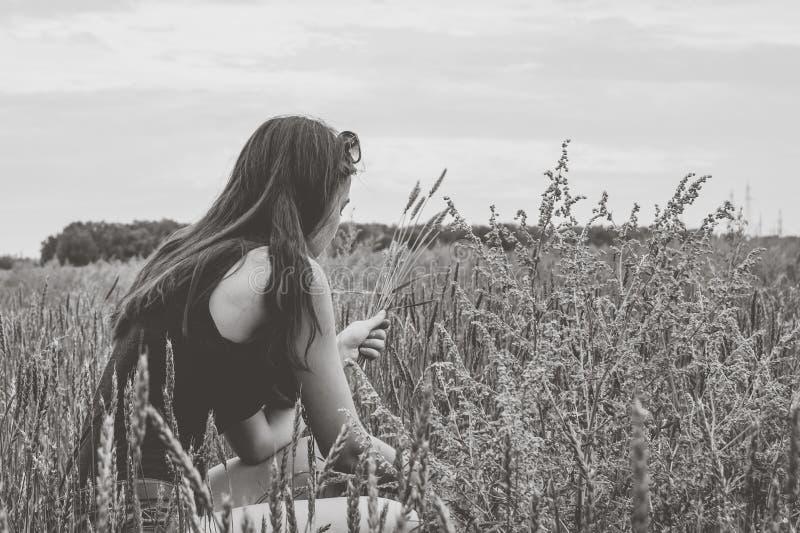 Espiguillas del trigo de la cosecha de la muchacha en el campo fotografía de archivo libre de regalías
