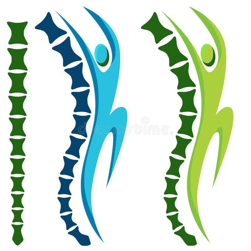 Espina dorsal activa sana stock de ilustración
