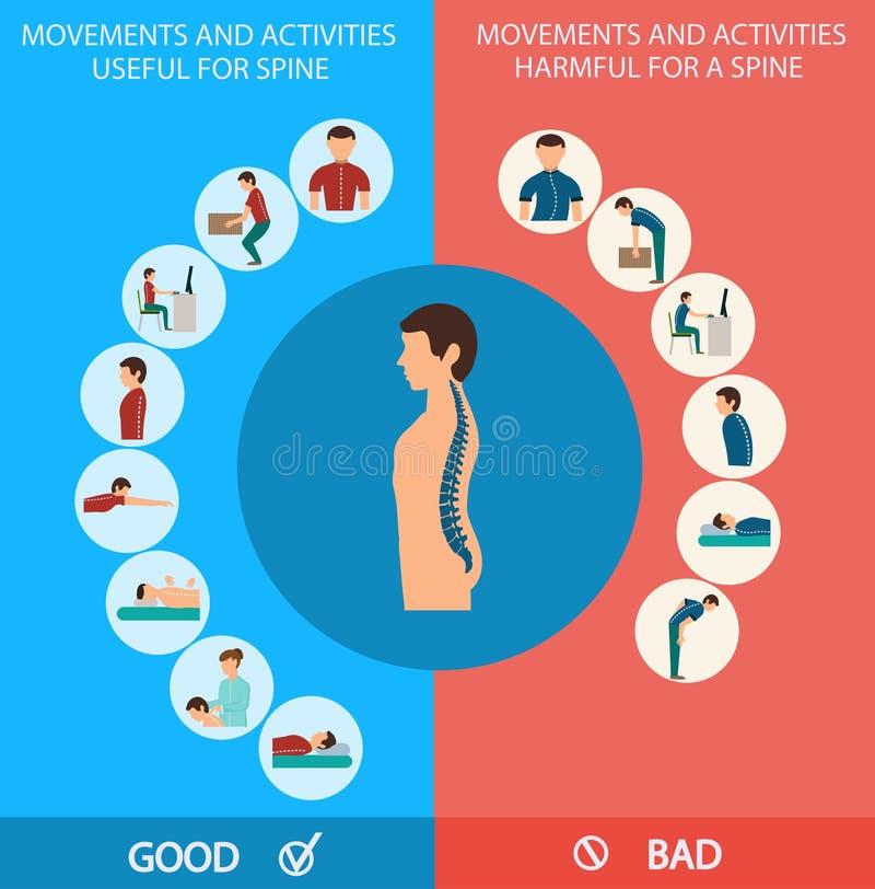 Espina dorsal Infographic Ilustración del vector libre illustration