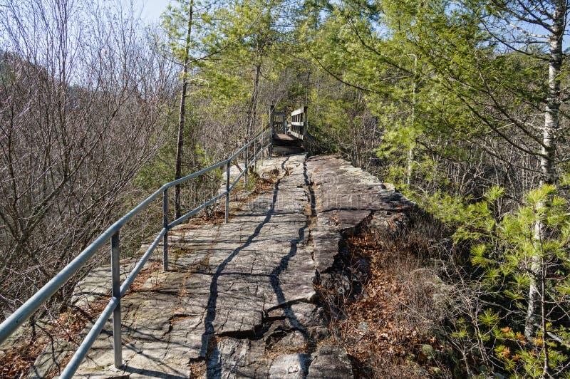 Espina dorsal Ridge Trail imagen de archivo