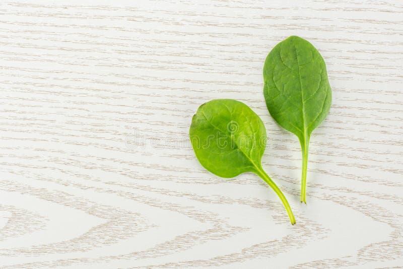 Espinafres verdes crus frescos do bebê na madeira cinzenta imagem de stock royalty free