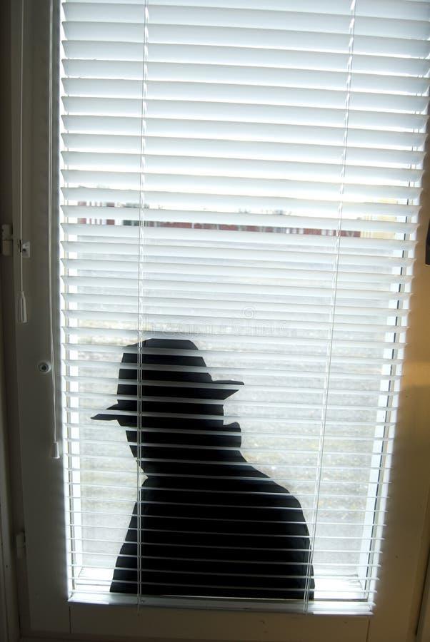 espion photographie stock libre de droits