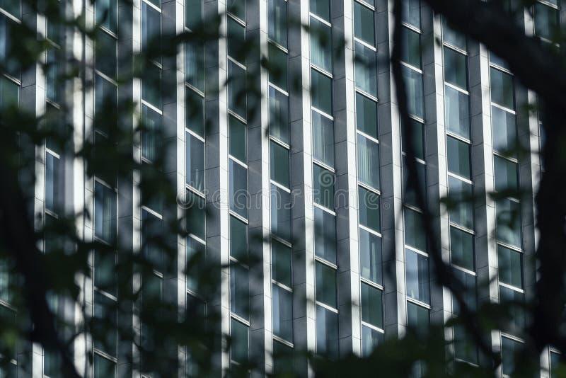 Espion regardant le bâtiment images libres de droits
