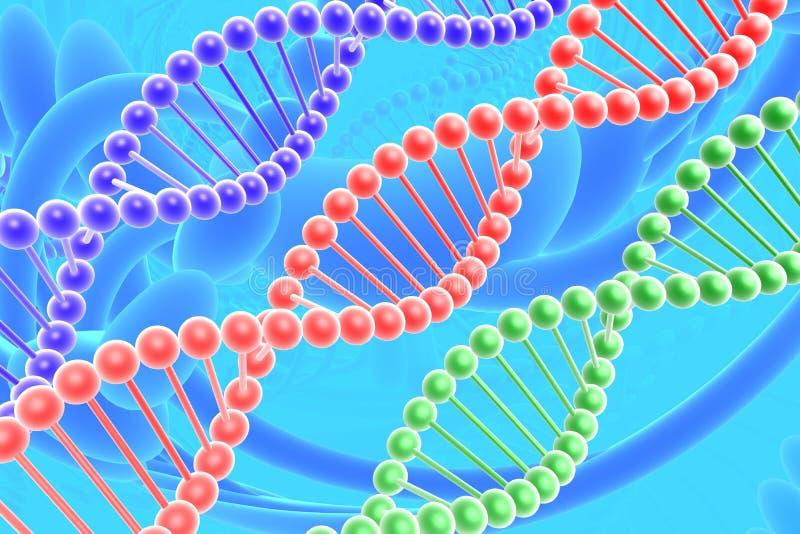 Espirais do ADN ilustração stock