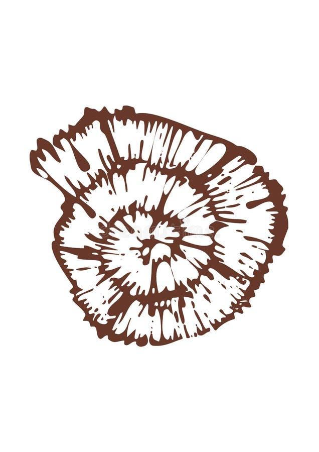 Espiral imagen de archivo libre de regalías
