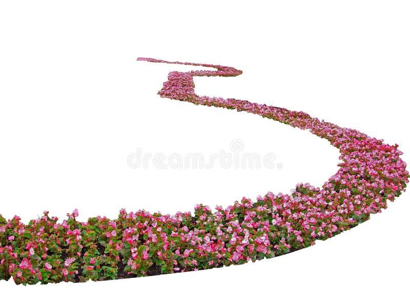 Espiral das flores foto de stock