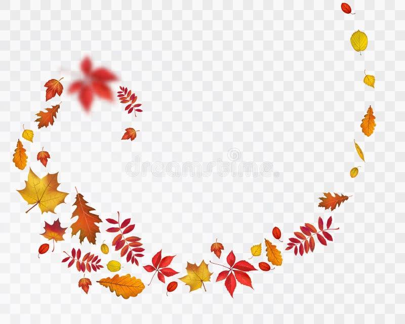 Espiral de las hojas de otoño en fondo transparente ilustración del vector