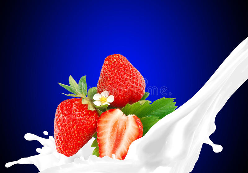 Espirrando o leite com a morango imagem de stock