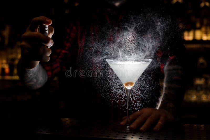 Espirro do empregado de bar amargo no vidro elegante com o martini fresco imagens de stock