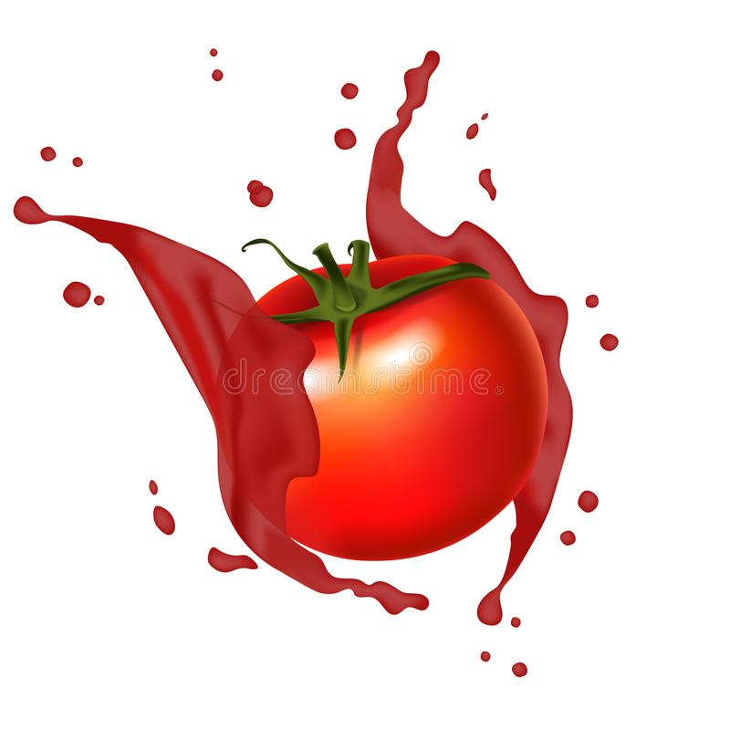 Espirro vermelho do tomate do suco Realístico, respingo suculento dos tomates 3d ilustração royalty free