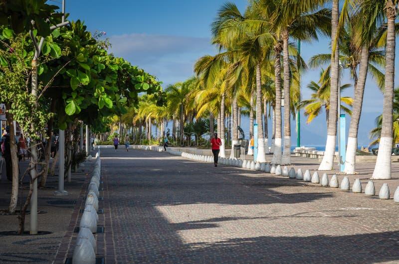 Esplanade - Puerto Vallarta, Mexico royalty free stock photos