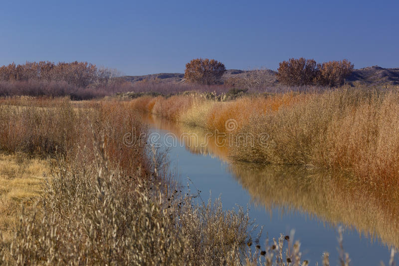 Esplendor del otoño en New México imágenes de archivo libres de regalías