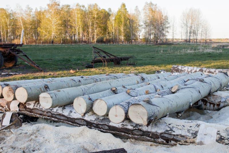 Esplogboeken die op een rij op een kleine zaagmolen in het platteland liggen Op de achtergrond - de lentebos royalty-vrije stock foto's