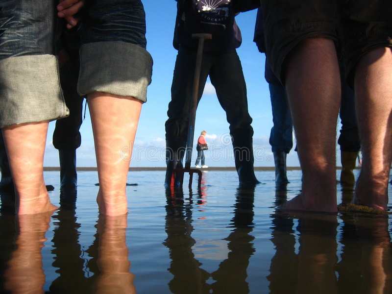 Esplorazione dei tidelands fotografia stock libera da diritti