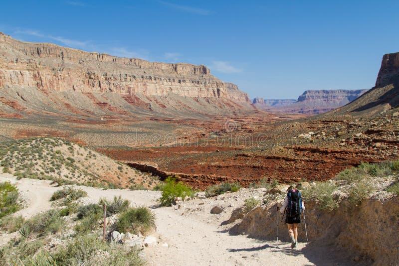 Esplorazione del canyon grande immagini stock libere da diritti