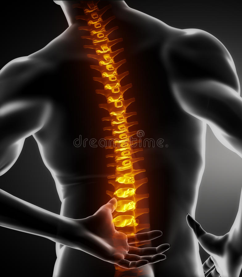 Esplorazione della spina dorsale del corpo maschio illustrazione di stock