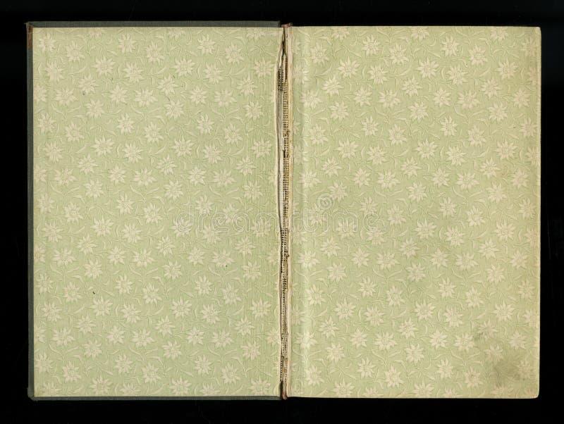 Esplori il risguardo di vecchio libro, verde-grigio-Brown, con il modello floreale denso e complesso immagine stock