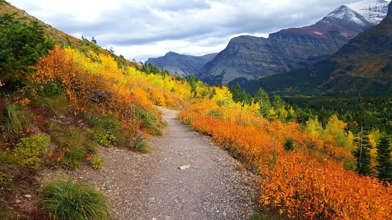 Esplosione di Autumn Colors in ghiacciaio fotografia stock libera da diritti