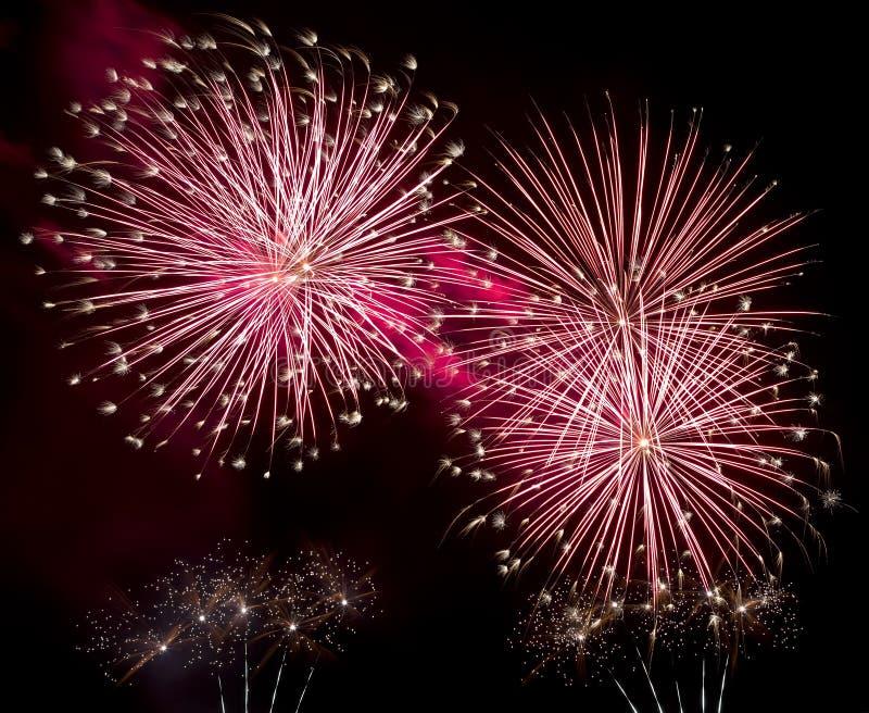Esplosione rossa dei fuochi d'artificio nel cielo notturno fotografie stock