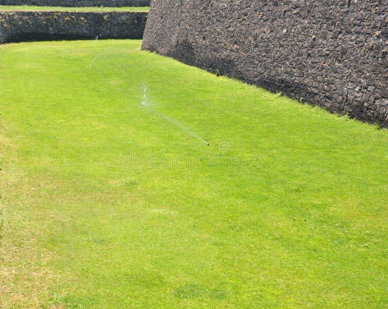 Espolvorines regando un jardín de hierba fotos de archivo libres de regalías