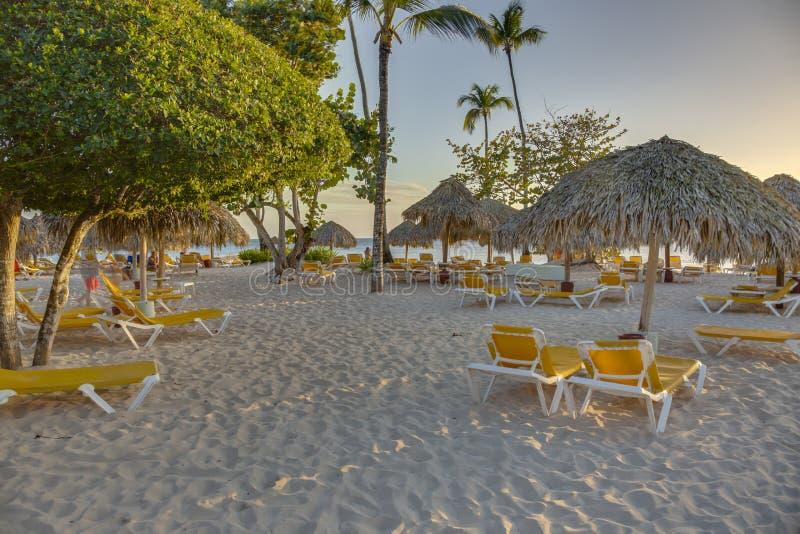 Esponga al sole i letti alla spiaggia tropicale sul dominicano Republik immagine stock