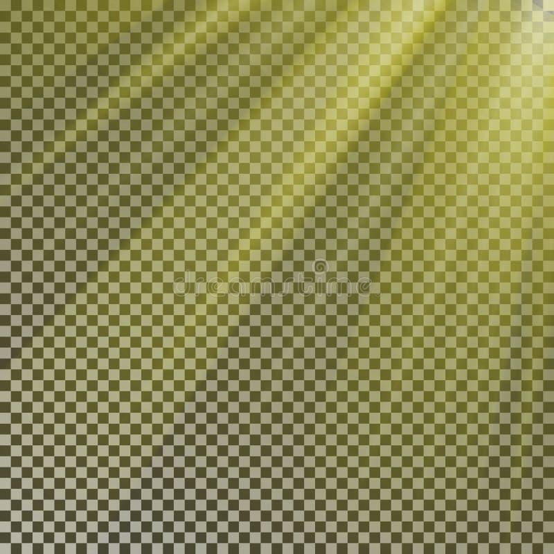 Esponga al sole l'isolato della luce del raggio sul vettore del fondo Effetto trasparente di luce solare di giallo di incandescen royalty illustrazione gratis