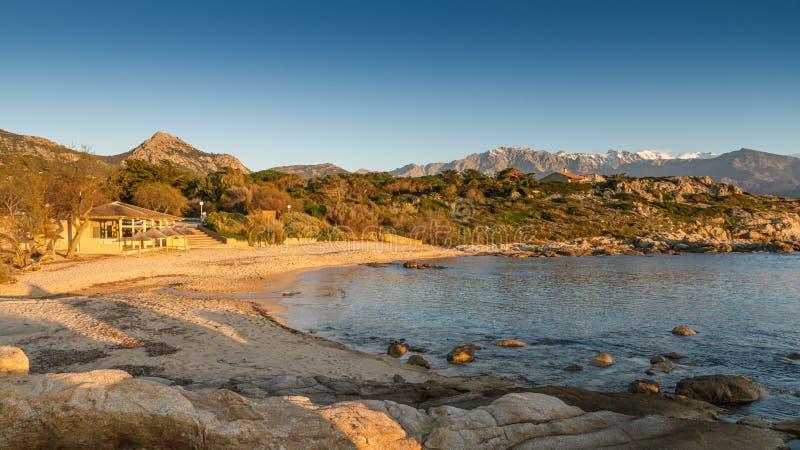 Esponga al sole la regolazione sulla spiaggia al flocculo di Arinella in Corsica fotografia stock libera da diritti