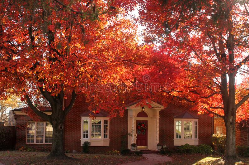 Esponga al sole splendere tramite le foglie rosse brillanti che proteggono una bella casa con mattoni a vista tradizionale con al fotografie stock libere da diritti