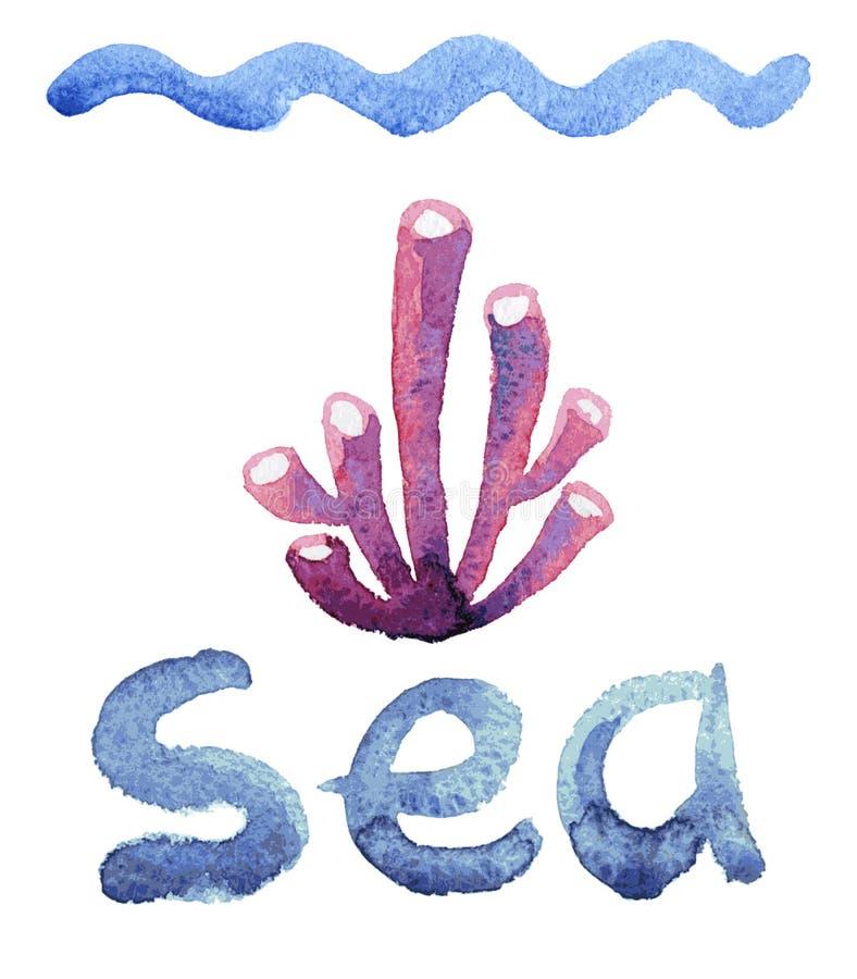 Esponja del mar de la acuarela libre illustration
